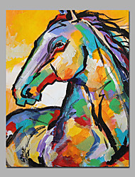 Colorful Horse Head Cute Modern FIne Art For Home Deco Big Size 60X90cm (24 X36 inch) Stretchered Painting
