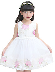 Girl's Summer Cotton Rose Lace Princess Dress