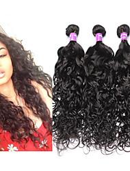 6A Malaysian Water Wave Virgin Hair Curly 3Pcs Malaysian Wet And Wavy Virgin Hair Human Hair Weaves CARA Hair Products