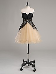 Cocktail Party Dress-Champagne A-line Strapless Short/Mini Lace / Satin / Tulle / Charmeuse