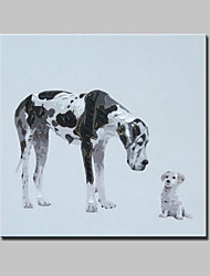 Large Hand Painted Canvas Oil Painting Modern Abstract Dogs Animal Pictures With Stretched Frame Ready To Hang 100x100cm