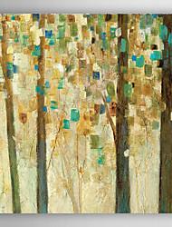 handgemaltes Ölgemälde Landschaft Reichweite für die Sonne Quadrat mit gestreckten Rahmen 7 Wand ARTS®