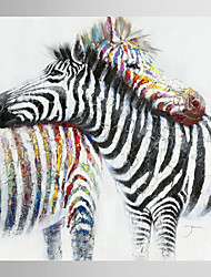 Hand Painted Oil Painting Animal Zebra Fell in Love with Stretched Frame