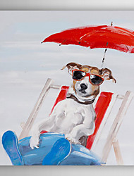 Hand Painted Oil Painting Animal Summer Fun Dog with Stretched Frame