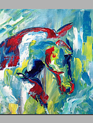 20 Inches Painting Colorful Horse Abstract Style