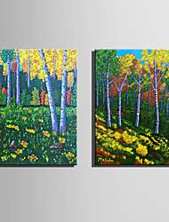 Mini Size E-HOME Oil painting Modern Colored Woods Pure Hand Draw Frameless Decorative Painting