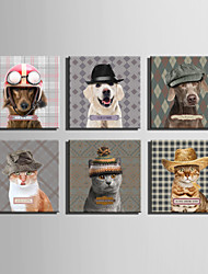 E-HOME® Stretched Canvas Art An Animal In A Hat Series Decoration Painting MINI SIZE One Pcs