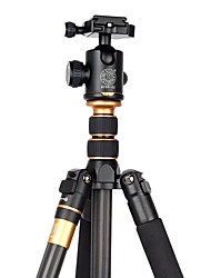 Qingzhuangshidai 4 parts contraction The carbon fiber material Take the weight of 6-10kg camera tripod monopods