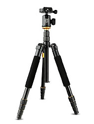 Qingzhuangshidai 4 parts contraction Aluminum alloy material Take the weight of 6-10kg camera tripod monopods