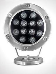 12W Lumière Sous-marine 500 lm RVB SMD Etanches AC 24 V 1 pièces