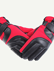 Ski Gloves Winter Gloves Unisex Activity/ Sports Gloves Keep Warm / Anti-skidding Gloves Ski & Snowboard Canvas / FleeceCycling Gloves /