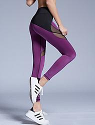 Women Solid Color Legging,Spandex