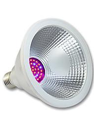 15W E26/E27 Lampes Horticoles LED PAR38 36 SMD 3020 1200 lm Rose Etanches AC 100-240 V 1 pièce
