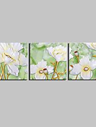 ботанический Холст для печати 3 панели Готовы повесить , Квадратный