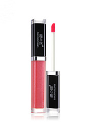 Lip Gloss Wet Liquid Long Lasting / Natural / Fast Dry