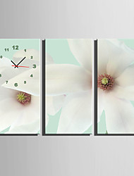 E-HOME® White Flowers Clock in Canvas 3pcs
