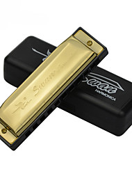 Bruce 10 hole harmonica C beginners to play the 10 hole 20 golden specifications