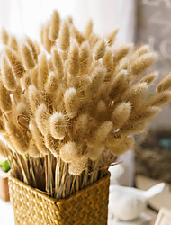 Hi-Q 1Pc Decorative Flowers Dog Tail Grass Wedding  Home Table Decoration Artificial Flowers