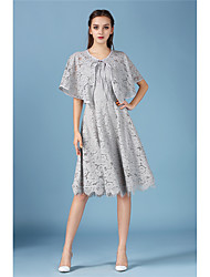Women's Casual/Daily Simple Lace Dress,Solid Round Neck Knee-length ½ Length Sleeve Blue Polyester Summer