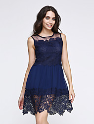 Women's Lace Party Cute Skater Dress,Solid Round Neck Mini Sleeveless Blue/White Others Spring/Summer/Fall