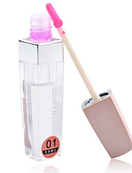Lip Gloss Wet Liquid Long Lasting / Natural / Fast Dry