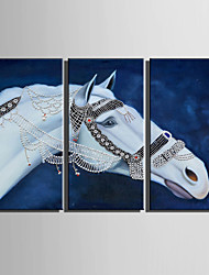 E-HOME® Stretched Canvas Art A White Horse Decoration Painting  Set Of 3