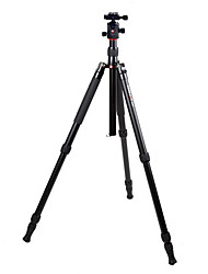 Jin Jie K1008 + Q10 Camera Tripod Aluminum Tripod Head Tripod Kit Easy To Carry