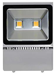 100w Luz de inundação IP65 Waterproof luzes de iluminação exterior lâmpada paisagem holofotes do campo de jogos (AC85-265V)