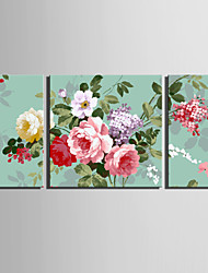 E-HOME® Stretched Canvas Art Flowers Decoration Painting  Set of 3