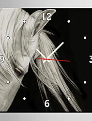 Carré Moderne/Contemporain Horloge murale , Animaux Toile40 x 40cm(16inchx16inch)x1pcs/ 50 x 50cm(20inchx20inch)x1pcs/ 60 x