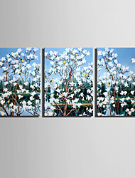 E-HOME® Stretched Canvas Art Flowers And Birds In The Tree Decoration Painting  Set of 3