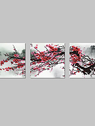 Stretched Canvas Art Floral Bloom Set of 3