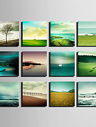 E-HOME® Stretched Canvas Art  Beautiful Scenery Series Decoration Painting MINI SIZE One Pcs