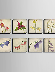 E-HOME® Stretched Canvas Art  A Simple And Elegant Flower Series Decoration Painting MINI SIZE One Pcs