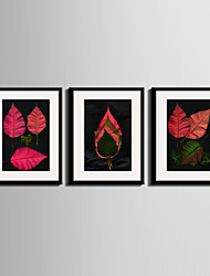 E-HOME® Framed Canvas Art, Colored Leaves Framed Canvas Print One Pcs