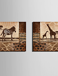 E-HOME® Stretched Canvas Art Zebra And Giraffe Decoration Painting  Set of 2