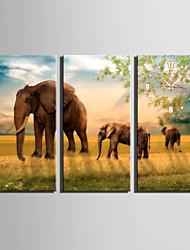 Rechteckig Modern/Zeitgenössisch Wanduhr , Tiere Leinwand 30 x 60cm(12inchx24inch)x3pcs/ 40 x 80cm(16inchx32inch)x3pcs