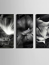 E-HOME® Stretched Canvas Art Fancy Flowers Decoration Painting  Set of 3