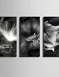 фантазия / ботанический Холст для печати 3 панели Готовы повесить,Вертикальная