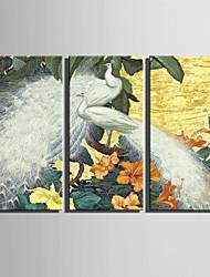 Animal Impressão em tela 3 Painéis Pronto para pendurar , Horizontal