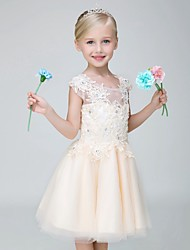 A-line Knee-length Flower Girl Dress - Tulle Short Sleeve Jewel with Appliques