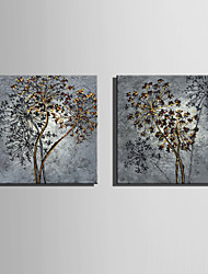 E-HOME® Stretched Canvas Art Flowers Decoration Painting  Set of 2