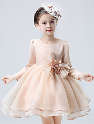 A-line Knee-length Flower Girl Dress - Organza / Satin Long Sleeve Jewel with Flower(s)