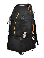 60L L Randonnée pack Camping & Randonnée / Voyage Extérieur Multifonctionnel / Respirable Vert / Bleu Nylon / Toile LIFETONE