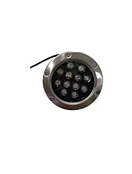 Led Underground Light Stainless Steel (Note Is White 9W)