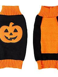 Chien Costume Pull Vêtements pour Chien Halloween Dessin Animé Orange