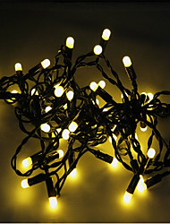 5M-50 Lights Led Christmas Bullet String Light
