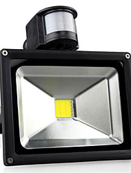 AC85-265V 30W Cold White / Warm White 3000LM Infrared Human Body Induction LED Floodlight 1Pc