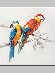 100% Hand Painted Two Parrots Animal Oil Painting On Canvas Modern Abstract Wall Art Picture For Home Decoration Ready To Hang