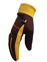 Ski-Handschuhe Vollfinger Damen / Herrn Sporthandschuhe Winddicht / Schneedicht Handschuhe Snowboarding Polyester Winter